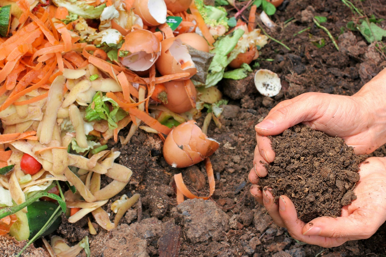 Use Of Compost