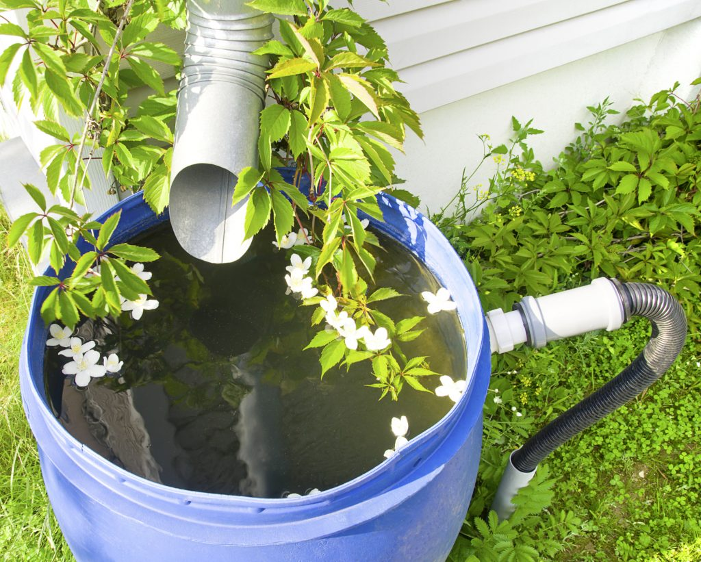 Water-saving Gardening Methods